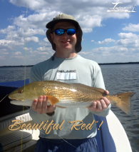 Beautiful_Redfish