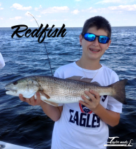 Colton_Redfish