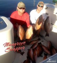 Offshore Charter for Mangrove Snapper