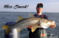 Nice Snook for Captain Elliott Taylor