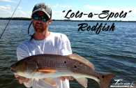 Redfish_Spots