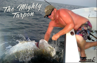The Mighty Tarpon